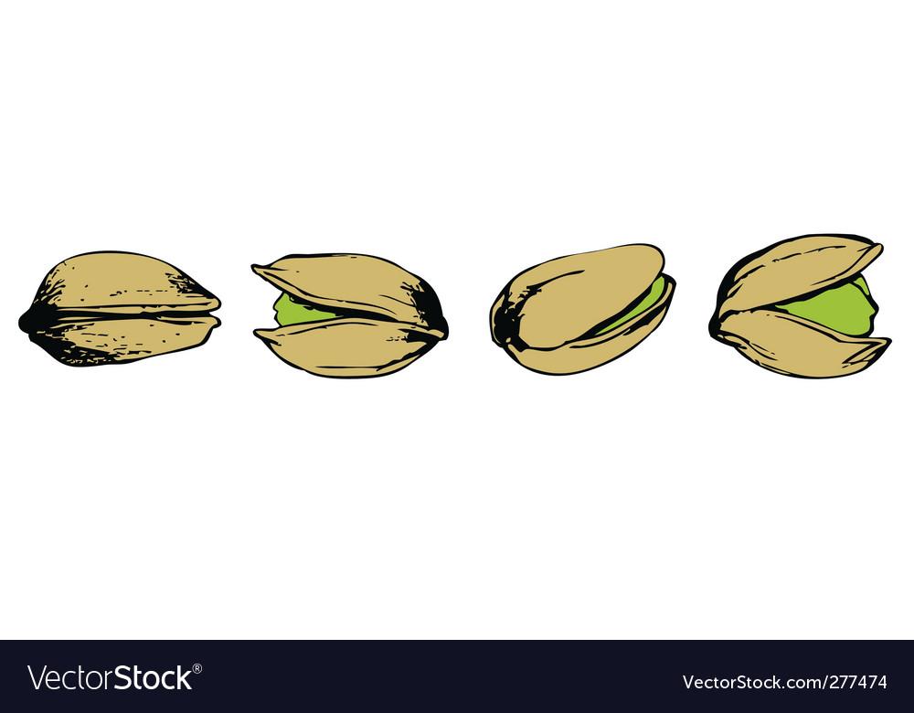 Set of pistachio vector | Price: 1 Credit (USD $1)