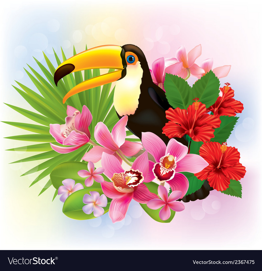 Tropical flowers and a toucan vector | Price: 3 Credit (USD $3)
