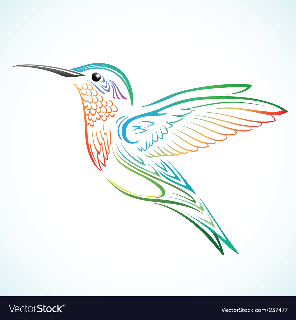 Colorful hummingbird vector | Price: 1 Credit (USD $1)