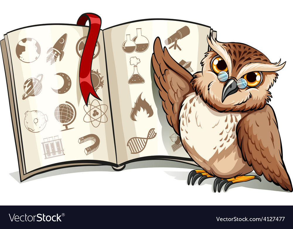 Owl beside the book vector | Price: 3 Credit (USD $3)