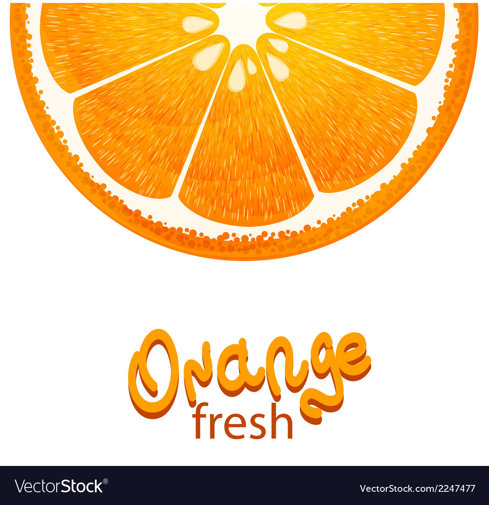 With half of orange on white background vector | Price: 1 Credit (USD $1)