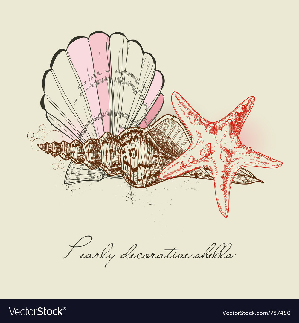Shells and starfish background vector | Price: 1 Credit (USD $1)