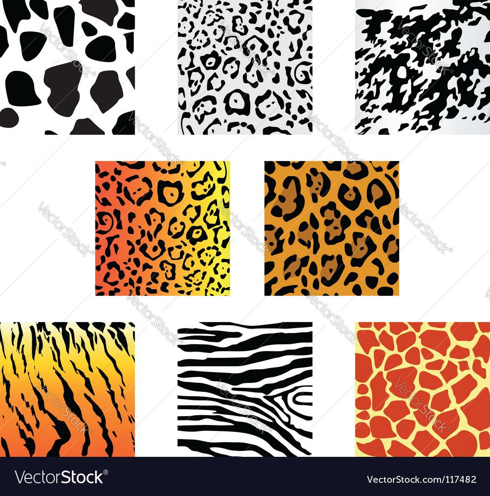 Animal fur and skin vector | Price: 1 Credit (USD $1)