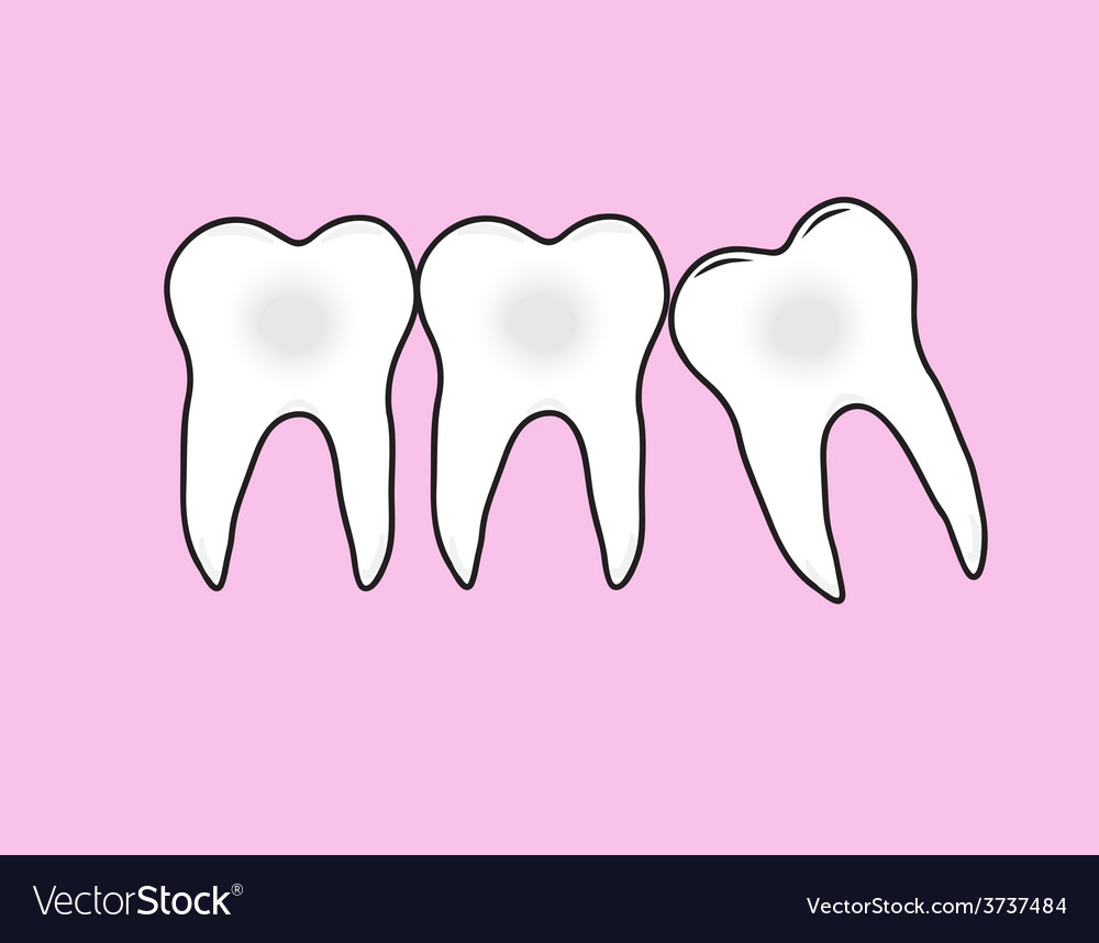 Tooths vector | Price: 1 Credit (USD $1)