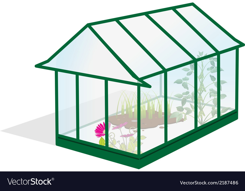 Greenhouse vector | Price: 1 Credit (USD $1)