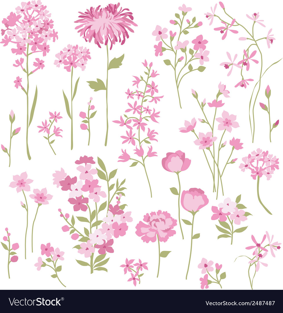 Hand drawn pink flowers vector | Price: 1 Credit (USD $1)