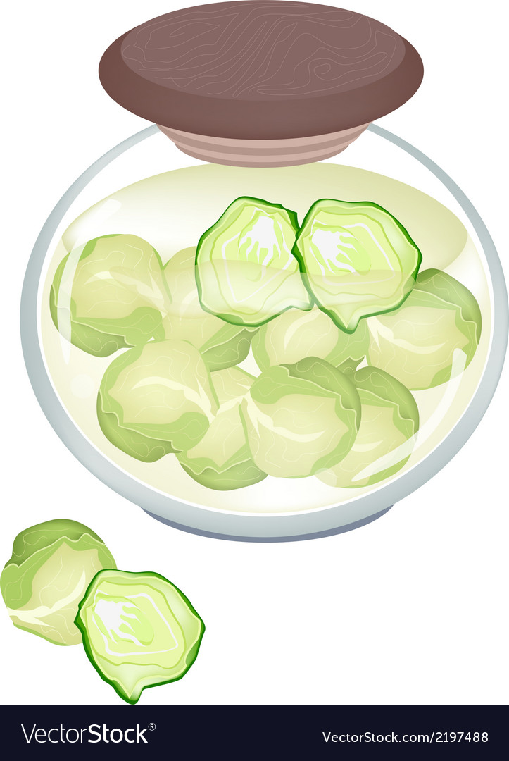 A jar of delicious pickled brussels sprouts vector | Price: 1 Credit (USD $1)