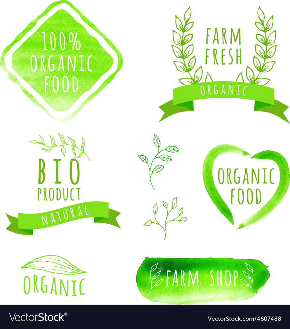 Set of watercolor organic food labels eco product vector | Price: 1 Credit (USD $1)