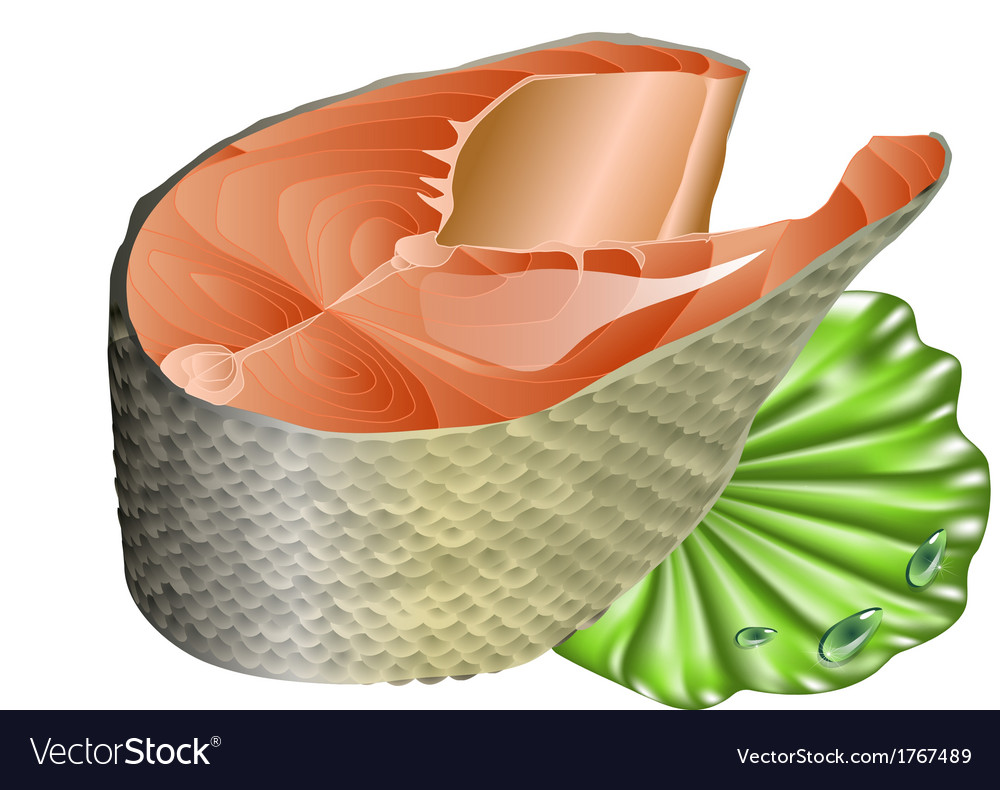 Salmon on lettuce leaf vector | Price: 1 Credit (USD $1)