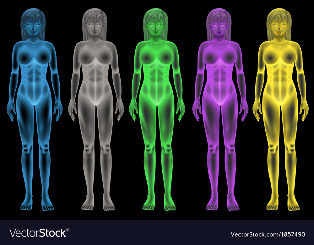 Female coloured bodies vector | Price: 1 Credit (USD $1)