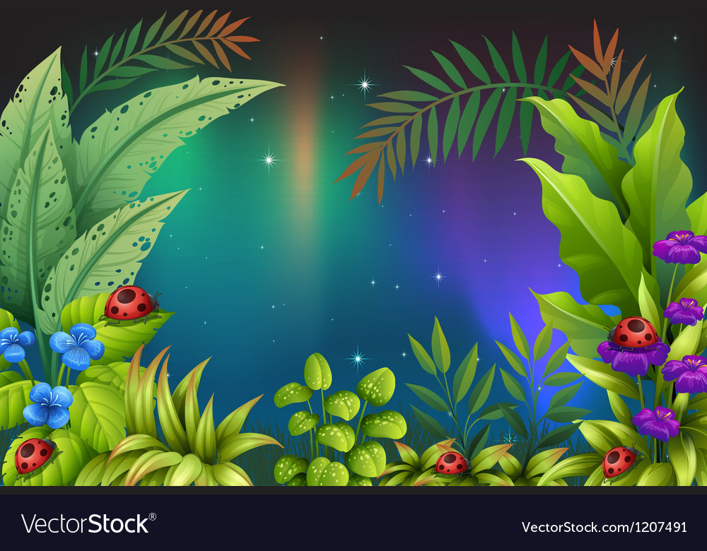 Five bugs in a rain forest vector | Price: 1 Credit (USD $1)
