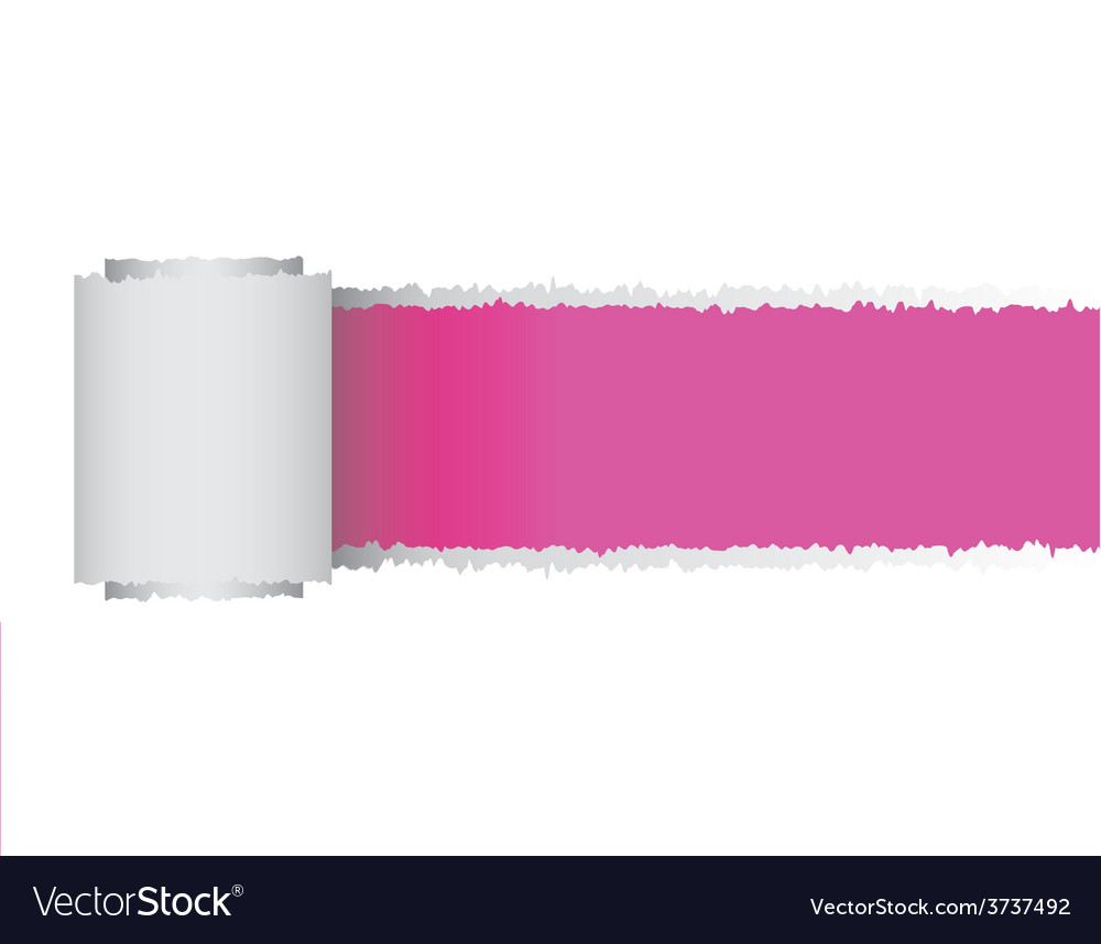 Torn paper roll vector | Price: 1 Credit (USD $1)