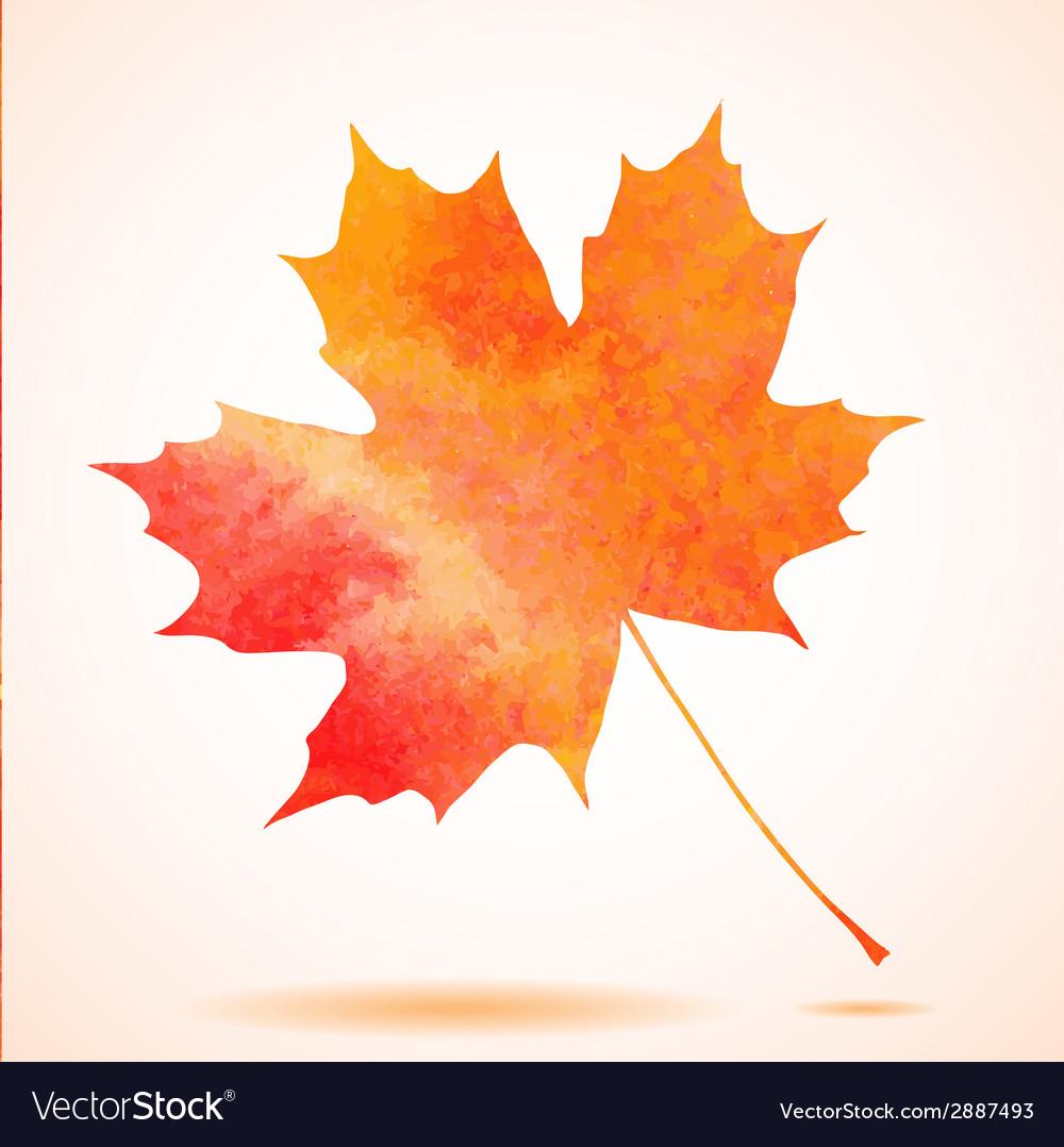 Orange watercolor painted autumn maple leaf vector