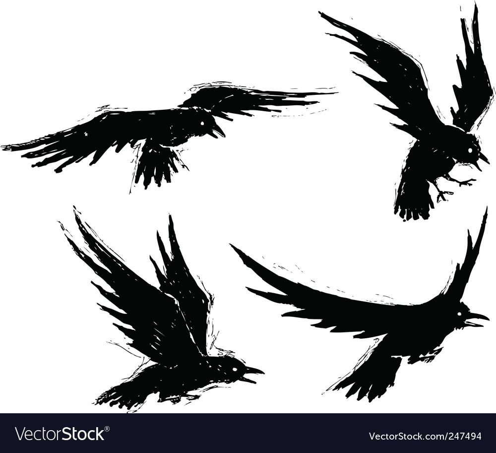 Grunge crows vector | Price: 1 Credit (USD $1)