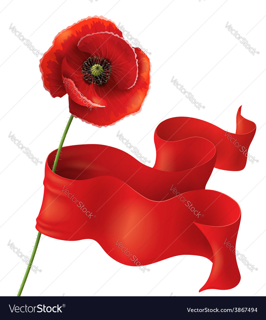 Poppy and ribbon vector | Price: 1 Credit (USD $1)