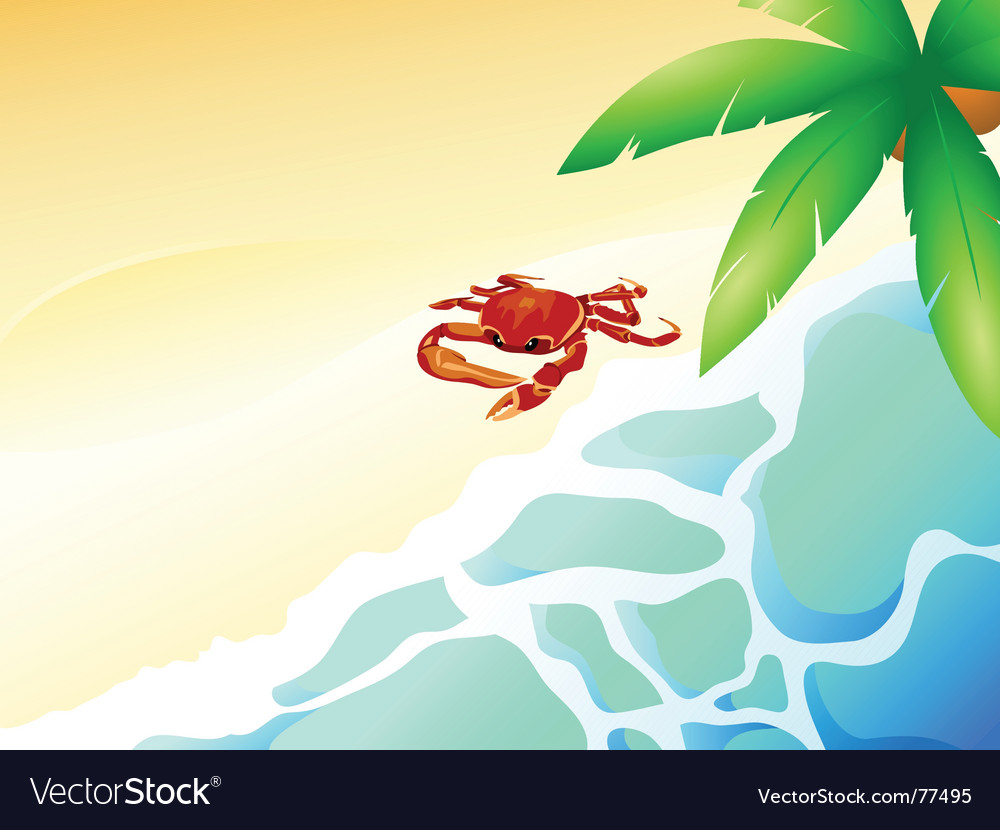 Crab beach vector | Price: 1 Credit (USD $1)