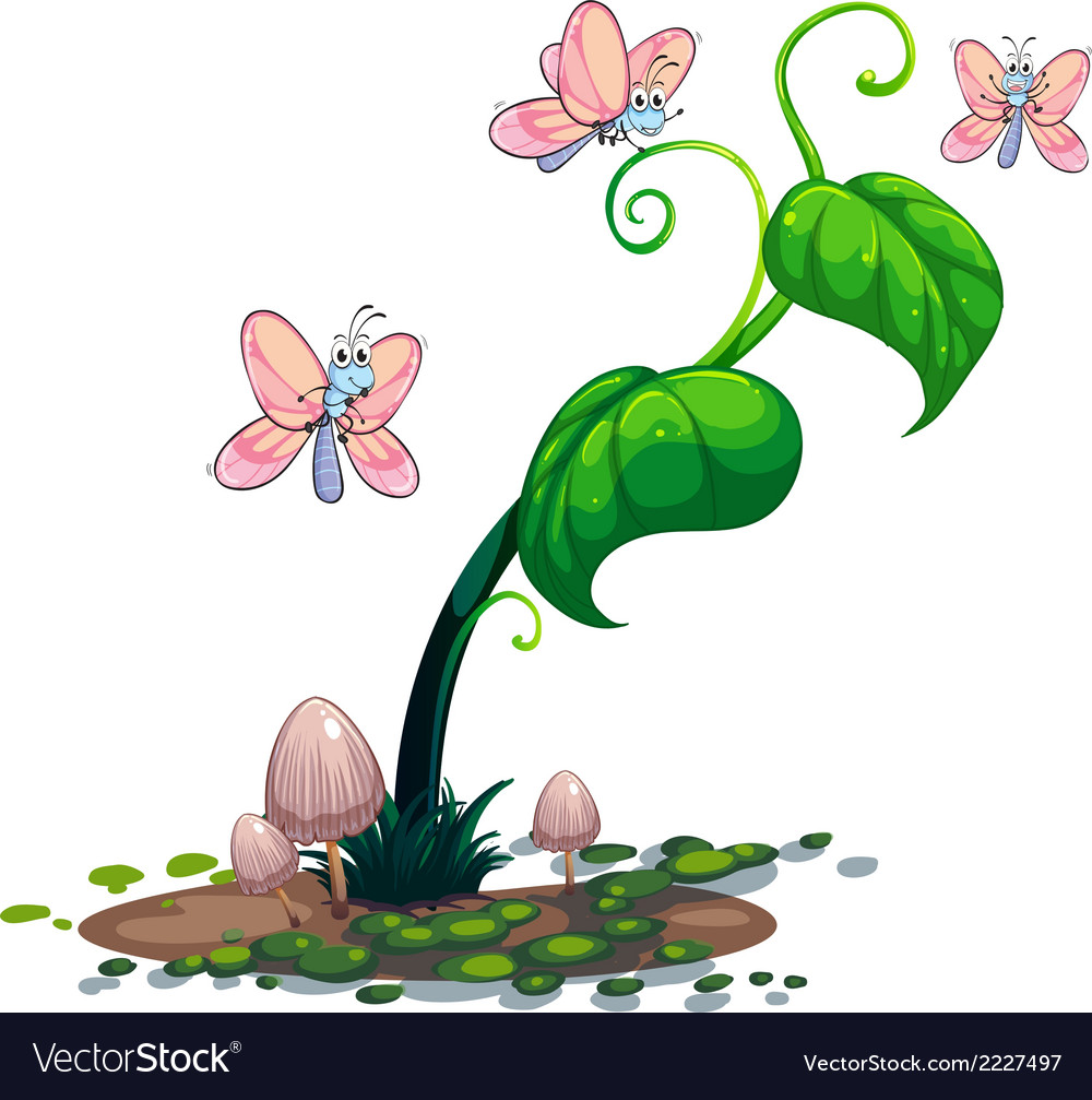 A green plant with butterflies vector | Price: 1 Credit (USD $1)