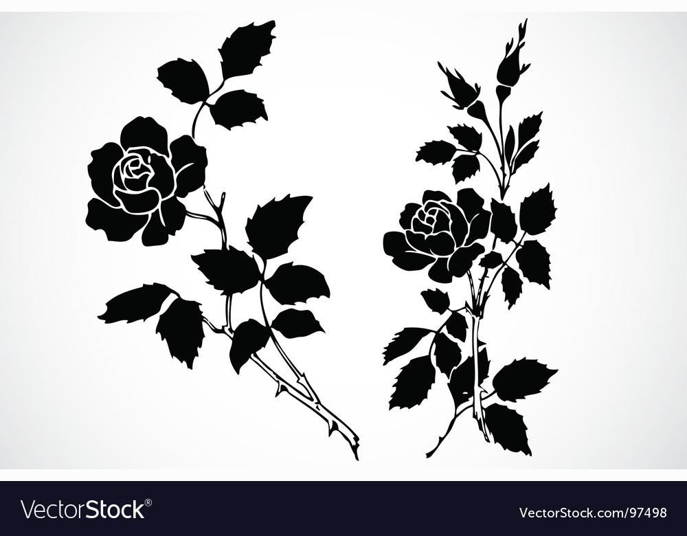 Rose stem ornaments vector | Price: 1 Credit (USD $1)
