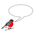 A funny bullfinch with a chatting bubble vector