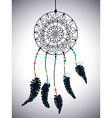 Color american indians dreamcatcher with bird vector