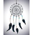 Color american indians dreamcatcher with bird vector