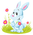 White rabbit vector