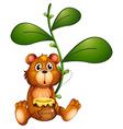A bear near a vine plant vector
