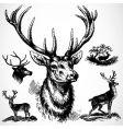 Deer ornaments vector