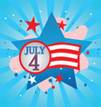 July 4 celebration vector