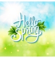 Welcoming the springtime - hello spring vector