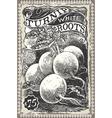 Vintage greengrocer - turnip advertising vector