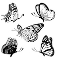 Set black white butterflies of a tattoo vector
