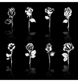 Icon set of flowers roses with reflections on blac vector