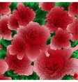 Seamless ornament with red flowers vector