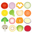 Vegetables slice set vector