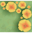 Vintage floral background with flowers poppies vector
