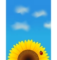Sunflower and ladybird vector