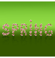 Spring word sakura blossom japanese cherry tree vector