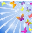 Butterflies on a blue sky background vector