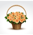Basket of yellow roses isolated vector