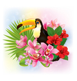 Tropical flowers and a toucan vector