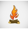 Fire burning on the wood design vector