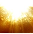 Abstract of light rays on the amber vector