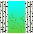 Birch background vector