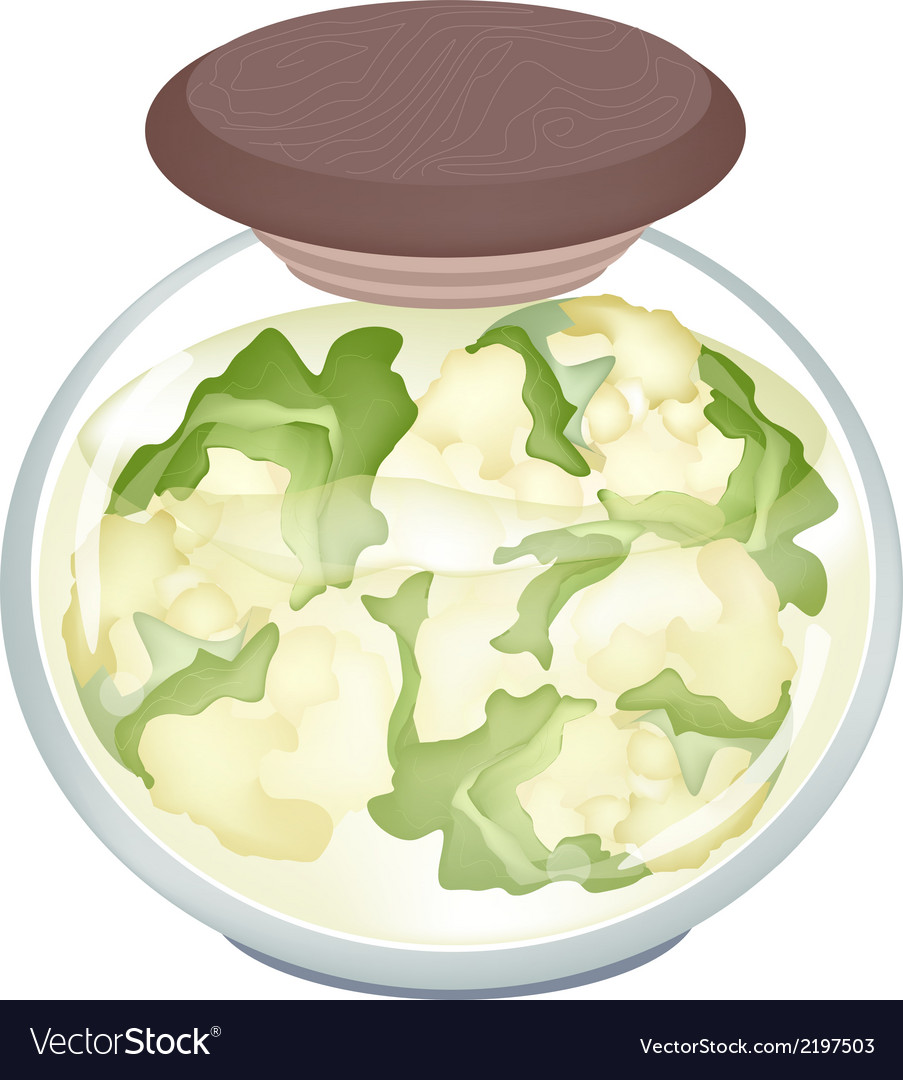 A jar of delicious pickled white cauliflower vector | Price: 1 Credit (USD $1)
