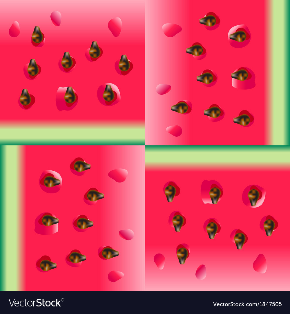Watermelon portion background vector   Price: 1 Credit (USD $1)