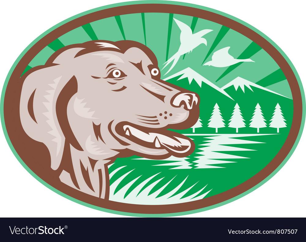 Labrador retriever vector | Price: 1 Credit (USD $1)