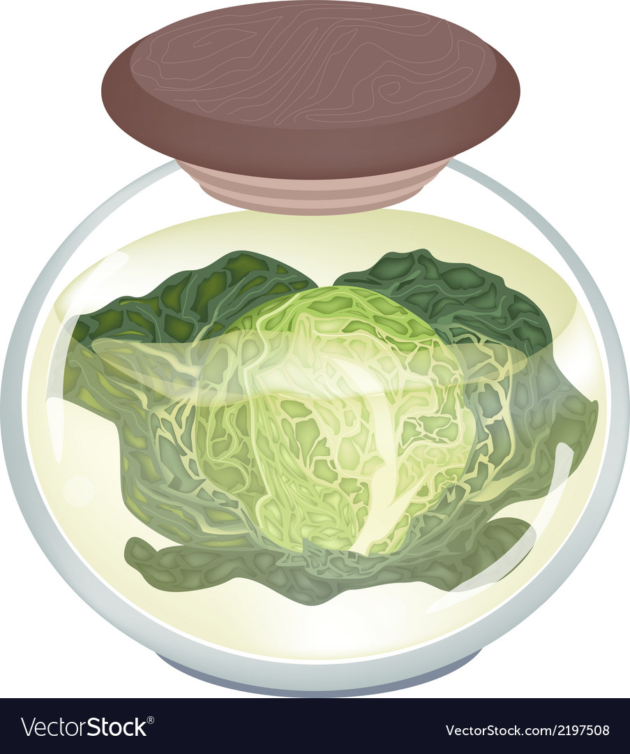 A jar of delicious pickled savoy cabbage vector | Price: 1 Credit (USD $1)