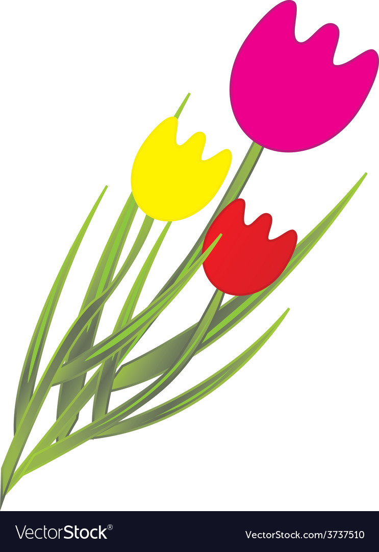 Tulips vector | Price: 1 Credit (USD $1)