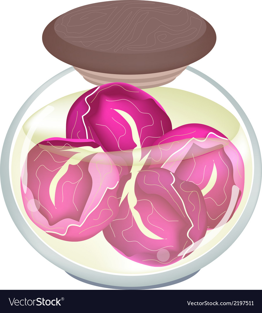 A jar of delicious pickled red cabbage vector | Price: 1 Credit (USD $1)